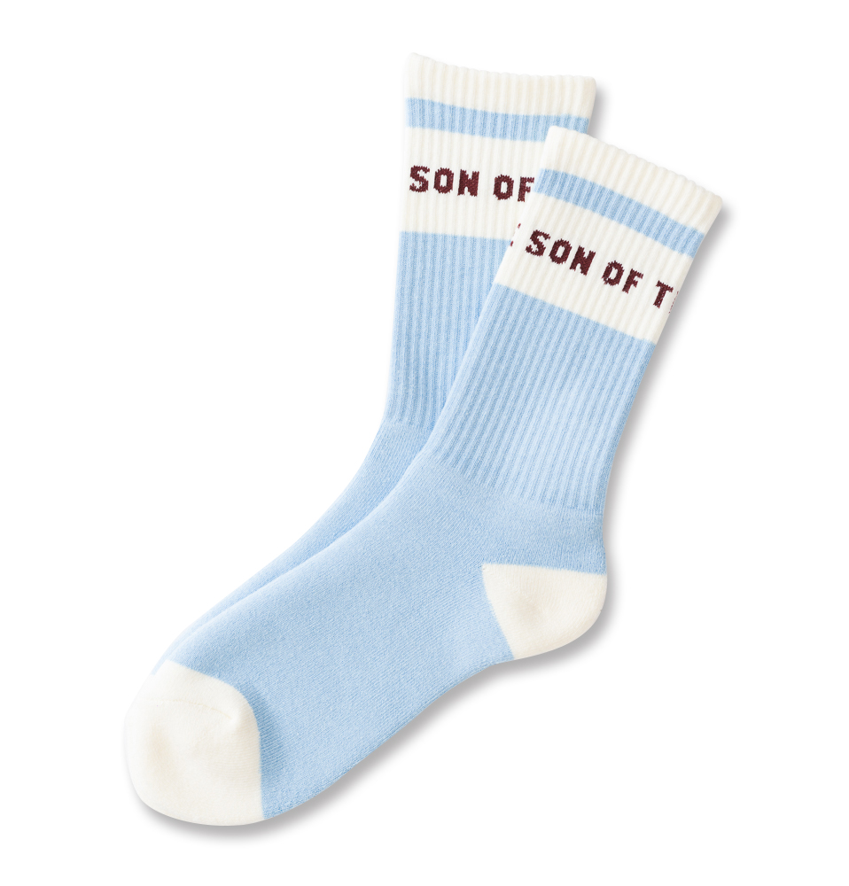 SON OF THE CHEESE POOL SOX